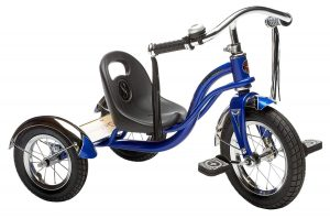 Be Careful The Electric Trike Scam